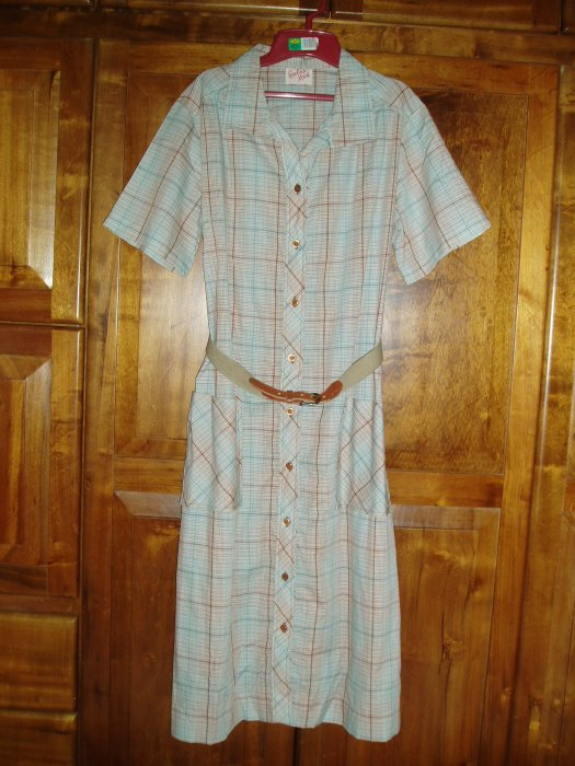 A CLASSIC SHIRTWAIST DAY DRESS WITH A STORY